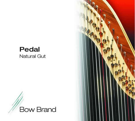 Bow Brand Natural Gut